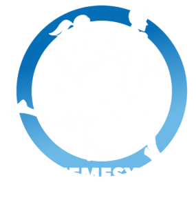 Logo nemesys tunnelloop_wit